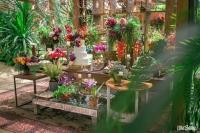 decoracao casamento jardim RJ MG SP (2)