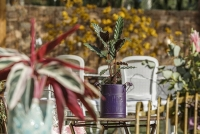 Casamento no Rio de Janeiro - Lago Buriti 14